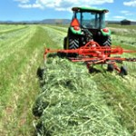 Tractor Cutting Hay