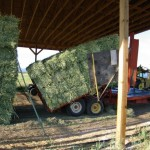 Baled hay on Truck